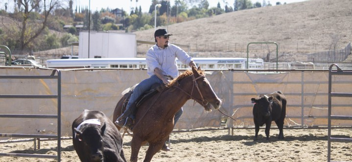 Horses and riders: good neigh-bors