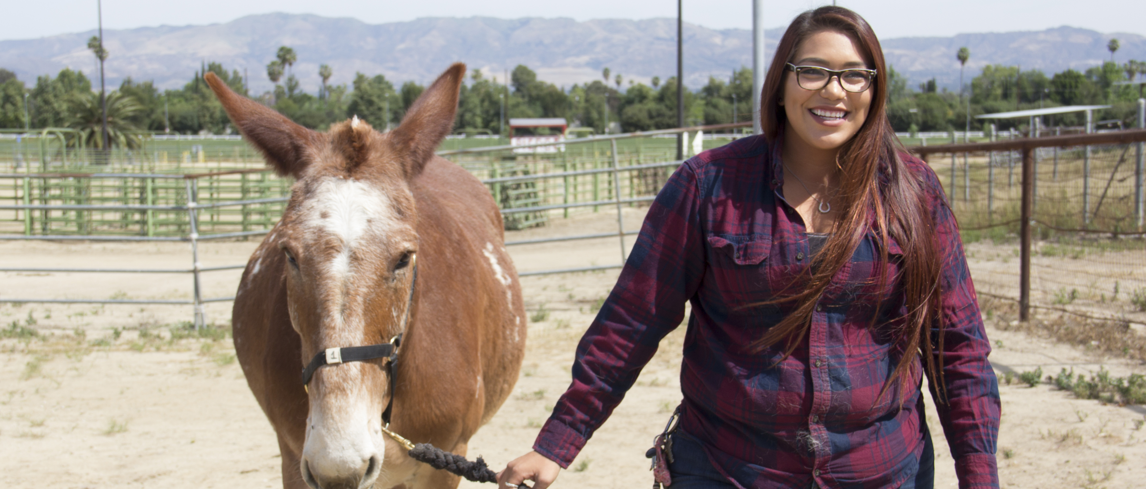 Equine Science student takes her love for horses to the racetracks