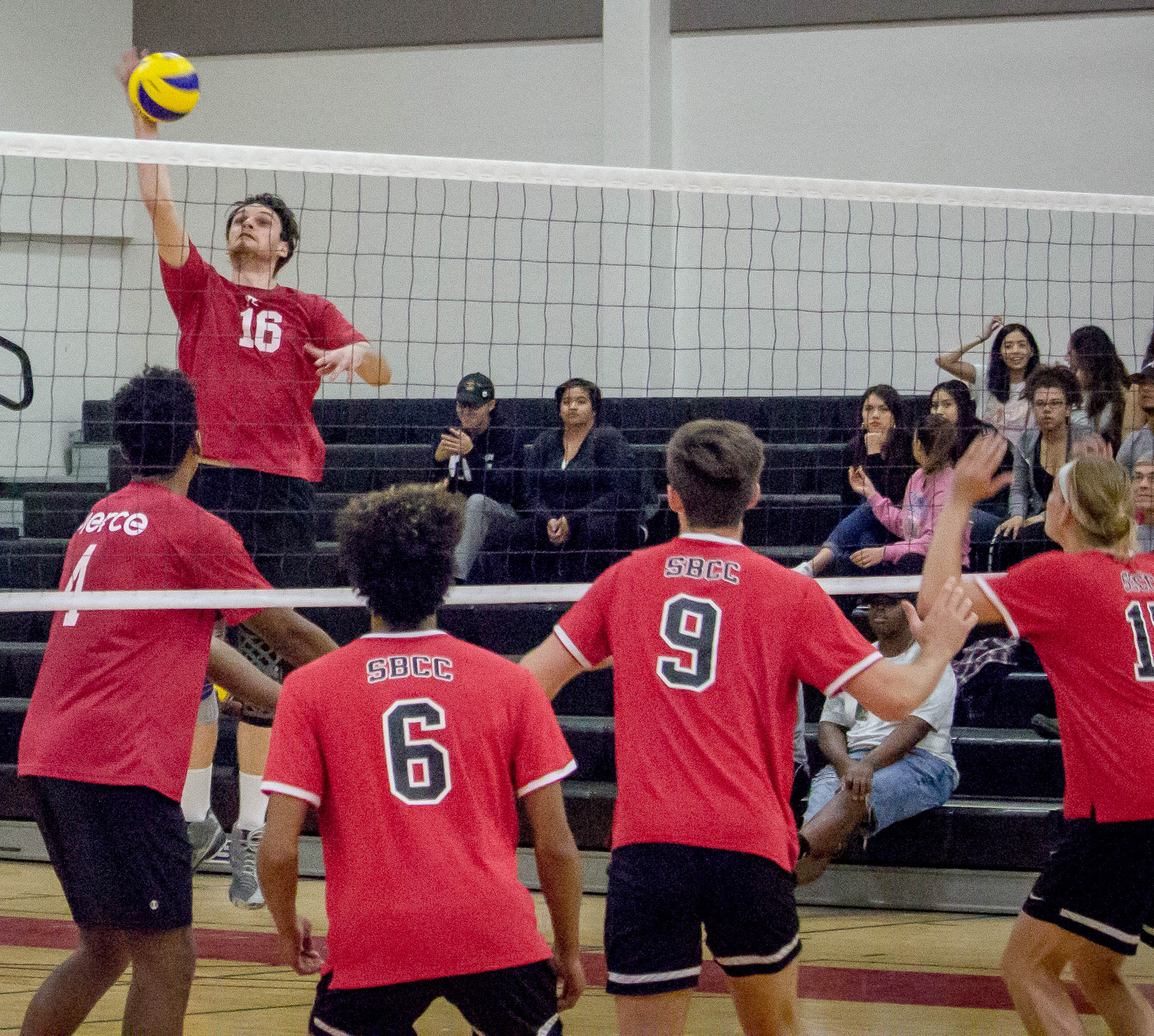 Volleyball clinches conference title