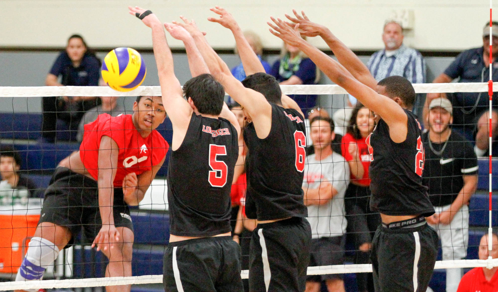 Volleyball ends Vikings' undefeated season, move on to finals vs. Orange Coast