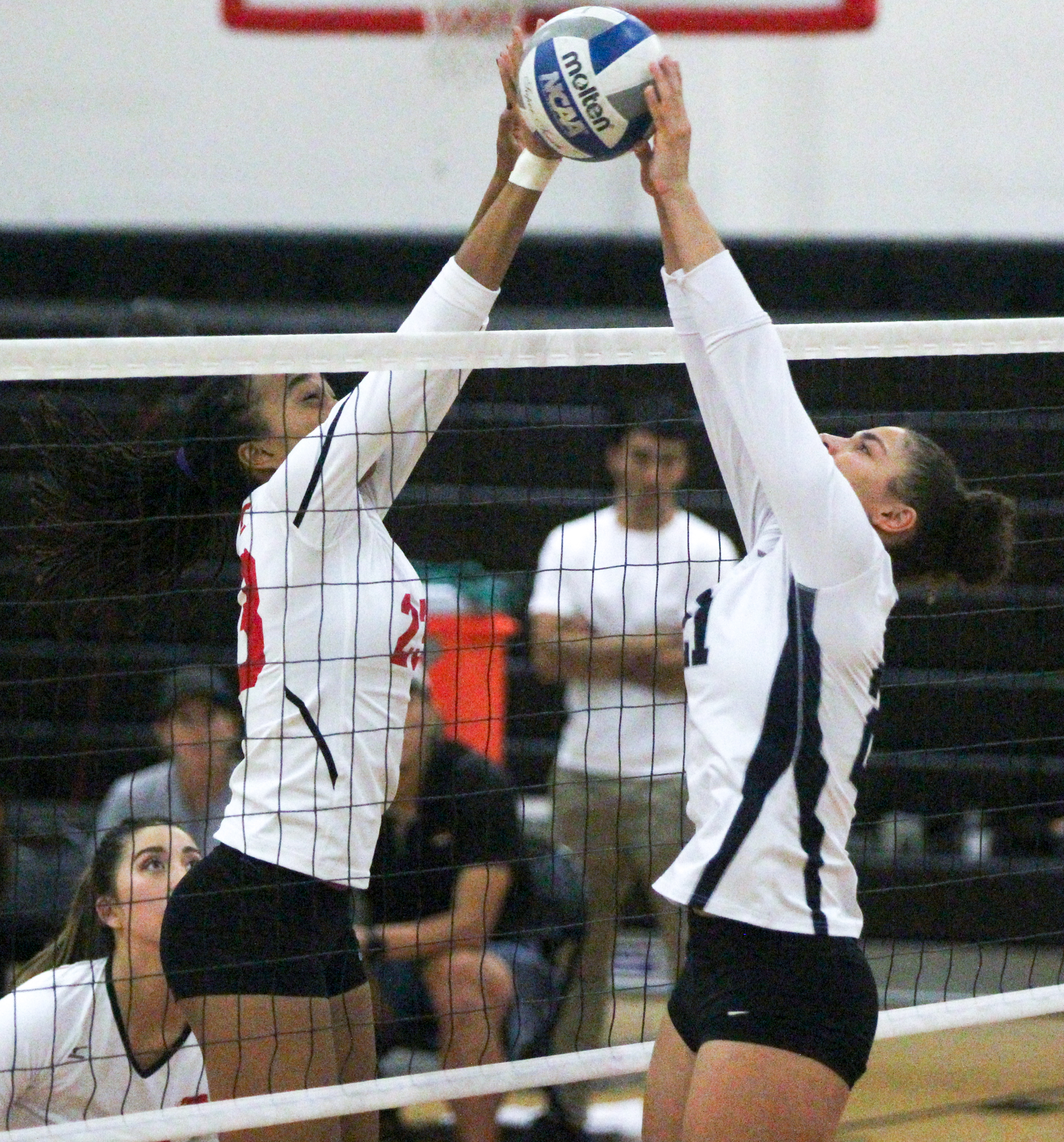 Volleyball drops final home game