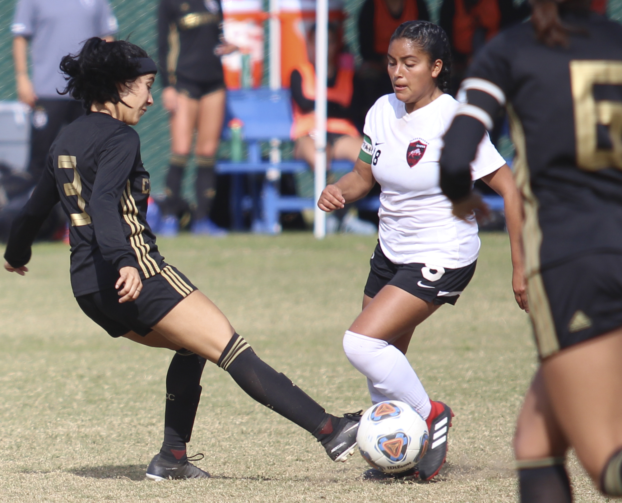 Season Review: Brahmas soccer