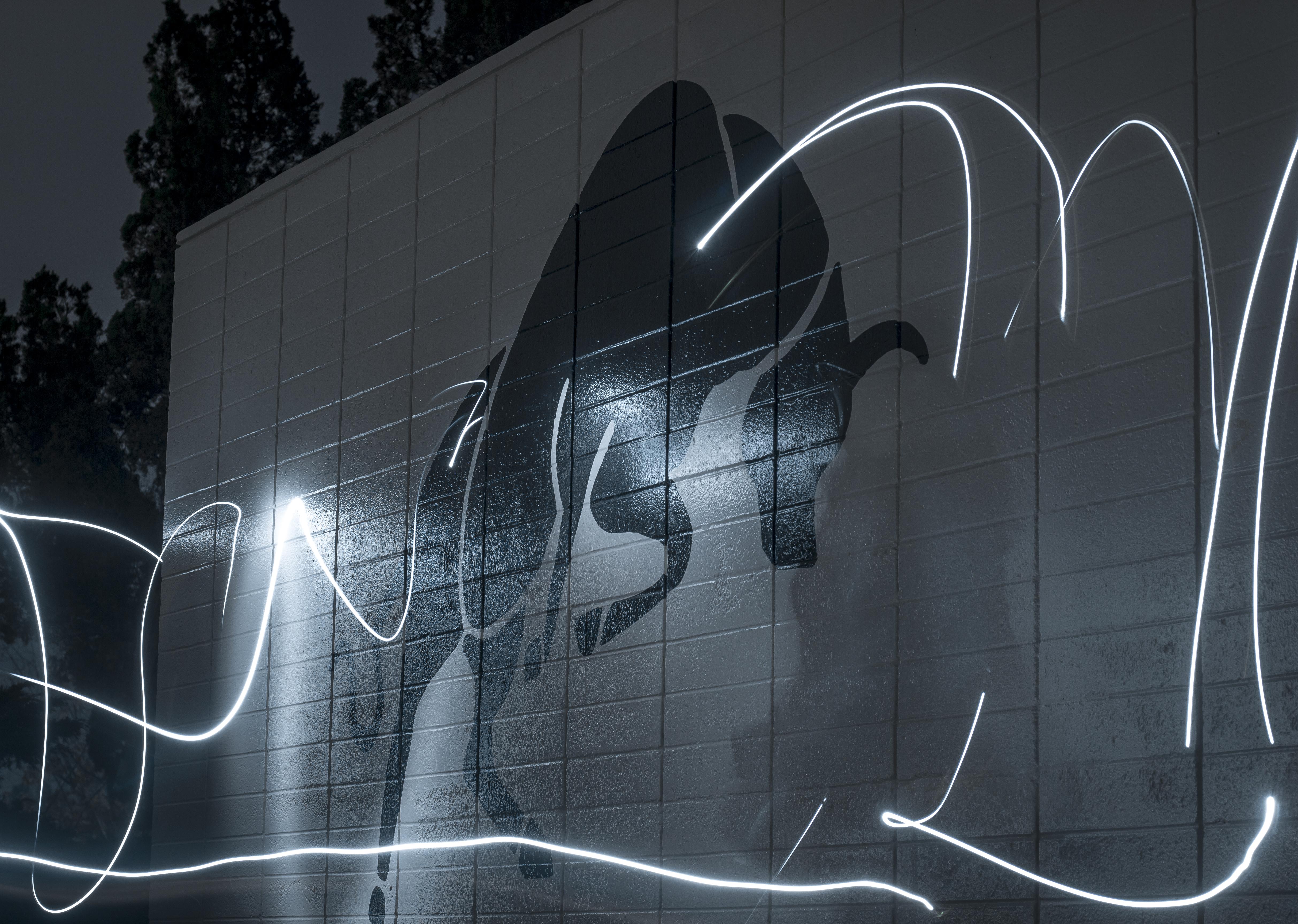 Pierce at night