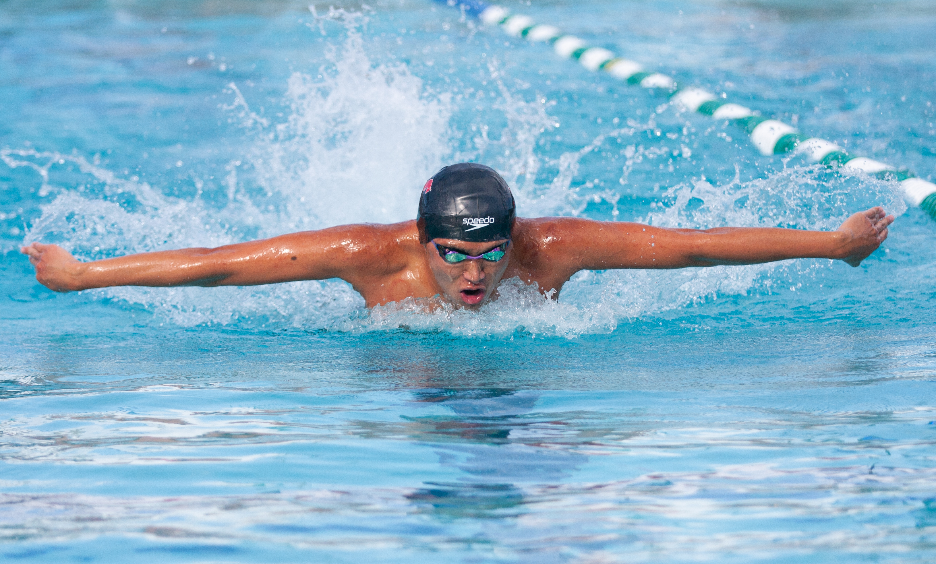 Swim gets accolades at state competition