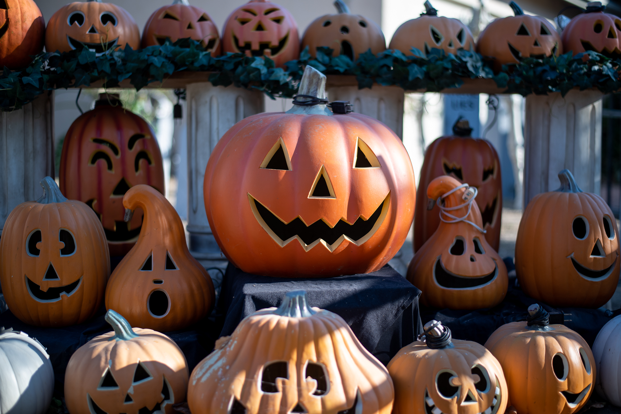 Streetbeat: What are your Halloween plans?