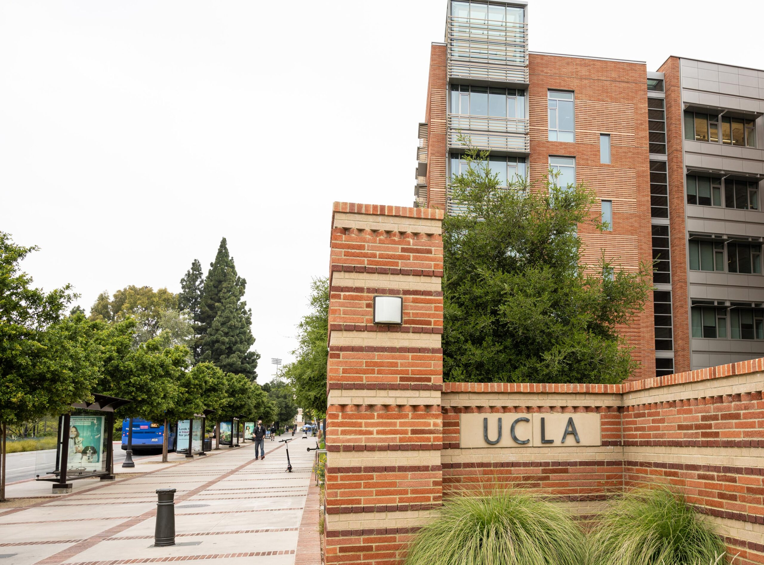 UCLA Day leads the way to becoming a Bruin